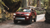What Will the 2023 Toyota 4Runner Have to Offer?